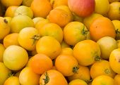 Assortment Of Yellow Tomatoes At A Farmer'S Market.