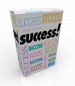 A product box with with the word Success calling attention to it, symbolizing the self-help movement