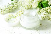 Dermatology Cosmetic Hygienic Cream With White Flowers Skincare Product-top View. Moisturizing Face  poster