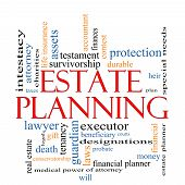 foto of asset  - Estate Planning Word Cloud Concept with great terms such as tenancy durable will financial lawyer executor probate and more - JPG