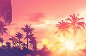 Tropical Palm Tree With Colorful Bokeh Sun Light On Sunset Sky Cloud Abstract Background. poster
