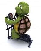 3d render of a tortoiserunning on a cross trainer