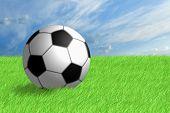 Football Ball On Green Grass.