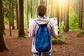 Back View Of Beautiful Young Girl With Map In Hands Standing In Forest. Tourist Wearing Rose Jacket  poster