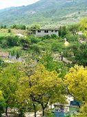 Haiti Hillside