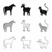 Isolated Object Of Breeding And Kitchen  Icon. Collection Of Breeding And Organic  Vector Icon For S poster