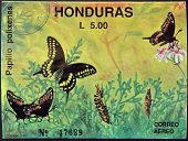 A stamp printed in Honduras shows butterfly Papilio polixenes