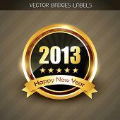 beautiful 2013 happy new year label vector