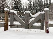 Snowy Farm Gate