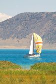 Sailboat On Bear Lake, Utah