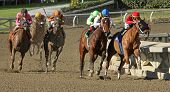 Book Review Wins 2012 The La Brea Stakes