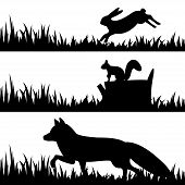 Set Silhouettes Of Animals In The Grass.