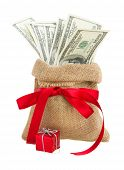 pic of sack dollar  - money in gift bag with red bow  isolated on white background - JPG