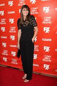 LOS ANGELES - SEP 3:  Amanda Peet at the FXX Network Launch Party And Premieres For