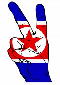 Peace Sign of the North Korean flag