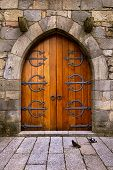 Beautiful old wooden door with iron ornaments in a medieval castle