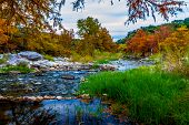 stock photo of calming  - Stunning Fall Colors of Texas Cypress Trees Surrounding the Crystal Clear Texas Hill Country Pedernales River - JPG