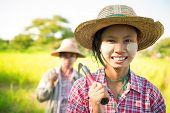 stock photo of southeast asian  - Southeast Asia Myanmar Asian traditional farmer planting or working in corn field - JPG