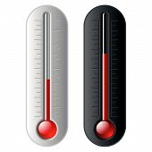 Thermometer. Vector