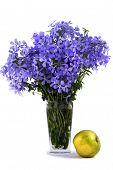 Bouquet Of Blue Flower About An Flavovirent Apple