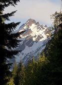 Fire Road Overlooks Del Campo Peak North Cascades Mountain Range