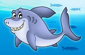 Smiling Cartoon Shark