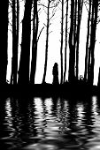 Silhouette Woman Between Trees Water Reflections