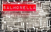 image of taint  - Salmonella Food Poisoning Concept Awareness and Prevention - JPG