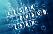 Learn, Coach, Lead In Blue Glass Cubes