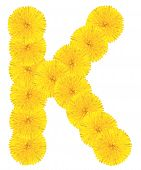 Letter K Made From Dandelions