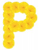 Letter P Made From Dandelions