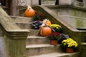 Harvest Home Front Stoop