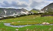 Stream In The High Alpine Tundra In Rawah Wilderness, Colorado During Summer