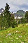 High Alpine Tundra In Rawah Wilderness, Colorado During Summer
