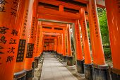 Torii Gates at Fushimi Inari-taisha shrine in Kyoto