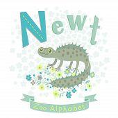 Letter N - Newt