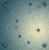 pic of spider web  - Web background - JPG