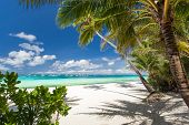 foto of boracay  - Tropical beach with white sand Philippines Boracay Island - JPG