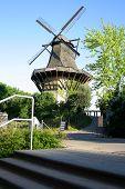 Huge, Historic Mill In Sanssouci Park, Potsdam