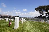 stock photo of headstones  - Headstones and Flags at American National Military Cemetery - JPG