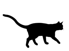 picture of black cat  - Black cat art illustration silhouette on a white background - JPG