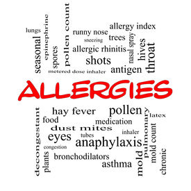 pic of dust mite  - Allergies Word Cloud Concept in red caps with great terms such as food pollen mold and more - JPG