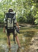 Rear view of a young woman carrying backpack while walking in forest water