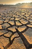 stock photo of water shortage  - dry cracks in the land, serious water shortages