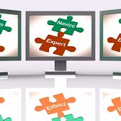 Novice Expert Puzzle Screen Shows Unskilled And Professional