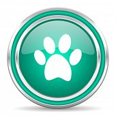 foot green glossy web icon