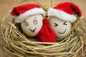 Happy eggs with persons in the nest for Christmas