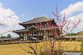 Todaiji Temple, Nara, Japan. Unesco Site