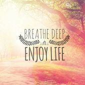Inspirational Typographic Quote - Breathe Deep and Enjoy life