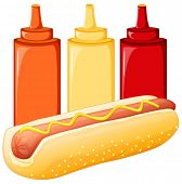 Illustration of a hot dog and sauces